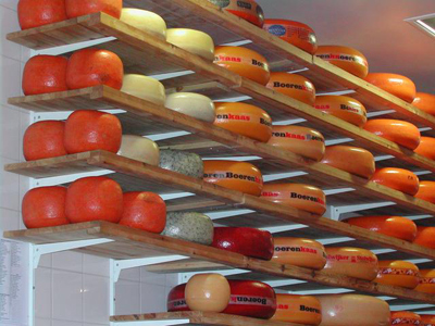 Shelves of cheeses in an Amsterdam shop