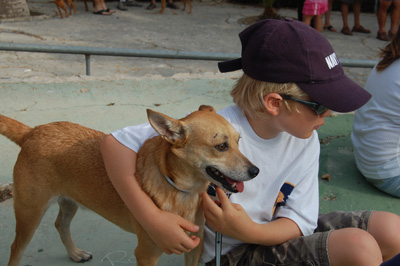 Dennis the dog and Hector, an eight-year-old boy from the UK