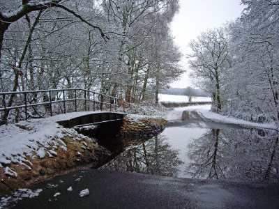 Flooded country lane in winter