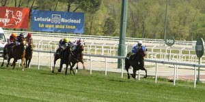 Racehorses galloping for the finishing line