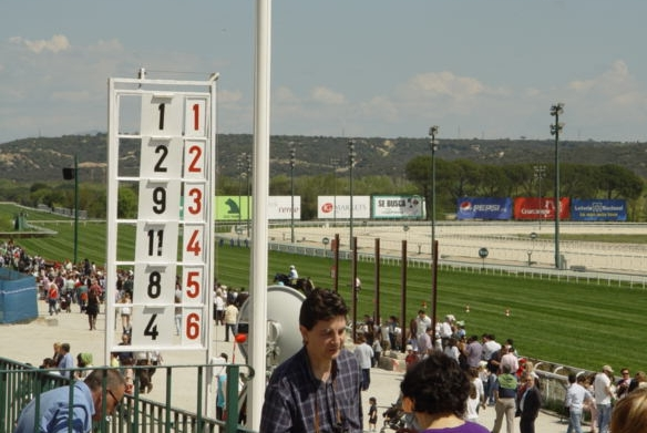 Madrid's Zarzuela racecourse on race day between races