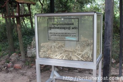 Bone fragments and teeth of victims of the Khmer Rouge at Choeung Ek