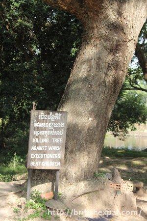 The Killing Tree at Choeung Ek killing field