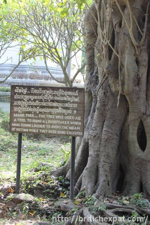 "The ""Magic Tree"" at Choeung Ek killing field"