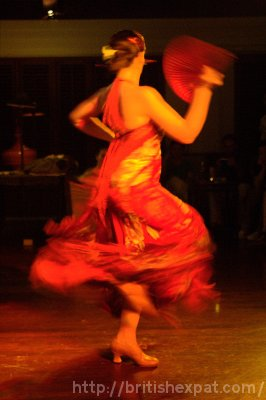 A flamenco dancer whirls mid-performance