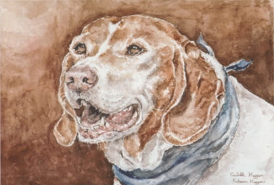 """Portrait of Sam, a Kelb tal-Kaċċa (""""gun dog"""")"""