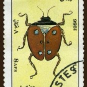 "Stamp from Afghan ""Reptiles"" series, but featuring a beetle"