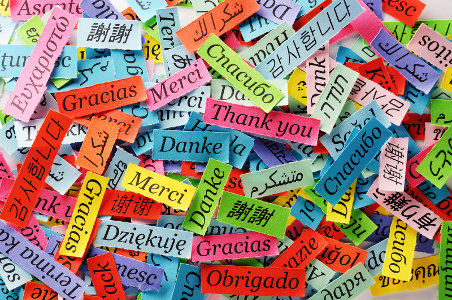 """The words """"Thank you"""" in several different languages"""