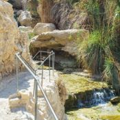 Ein Gedi spring near the Dead Sea, Israel