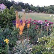Mike K-H's 2.6 hectare garden