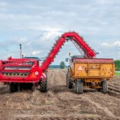 A mechanised potato harvester at work